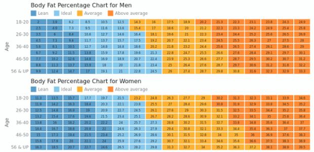 Body Fat Charts | Heat Maps | AnyChart