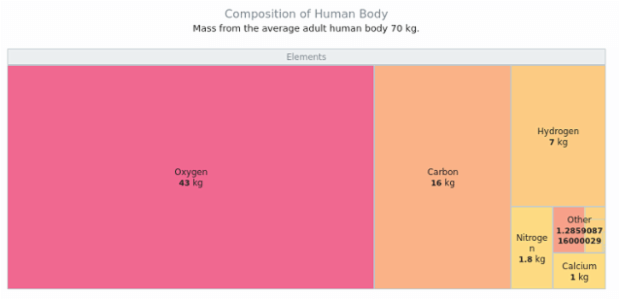 Composition of the human body   Tree Maps   AnyChart
