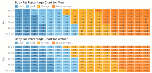 Normal Body Fat Percentage Women